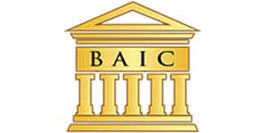 partners_0006_baic